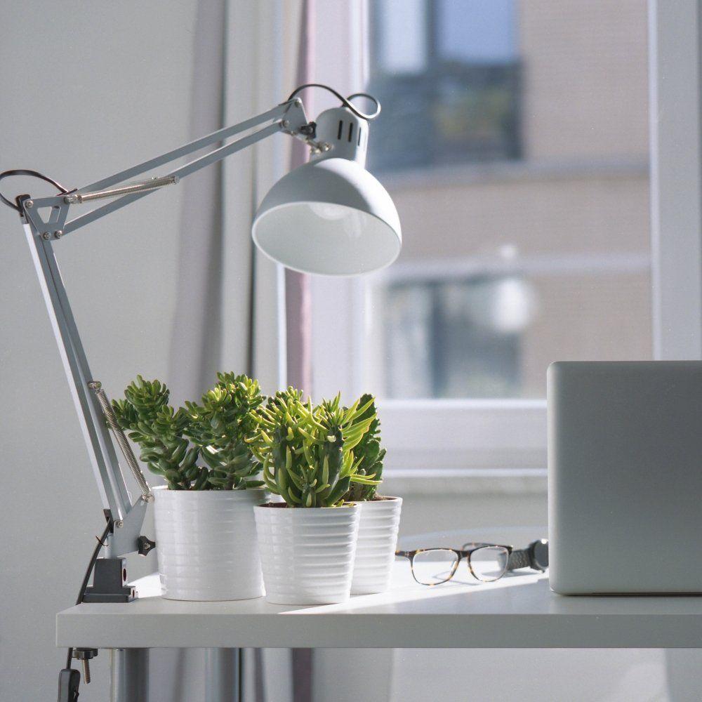 Какая настольная лампа для школьника лучше: 4 показателя качества и безопасности